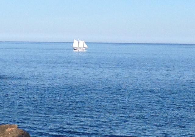 schooner Ardell, Gloucester MA neversaydiebeauty.com @redAllison