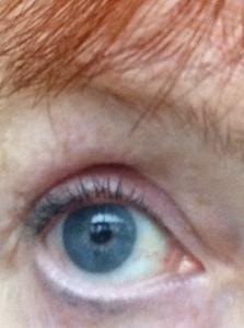 Paula-Dorf-Teal-Mascara-eye