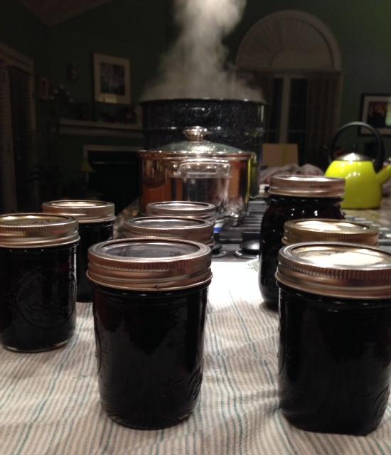 finished-jam-jars