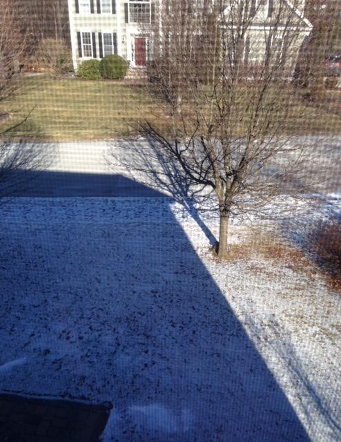 snow-on-lawn