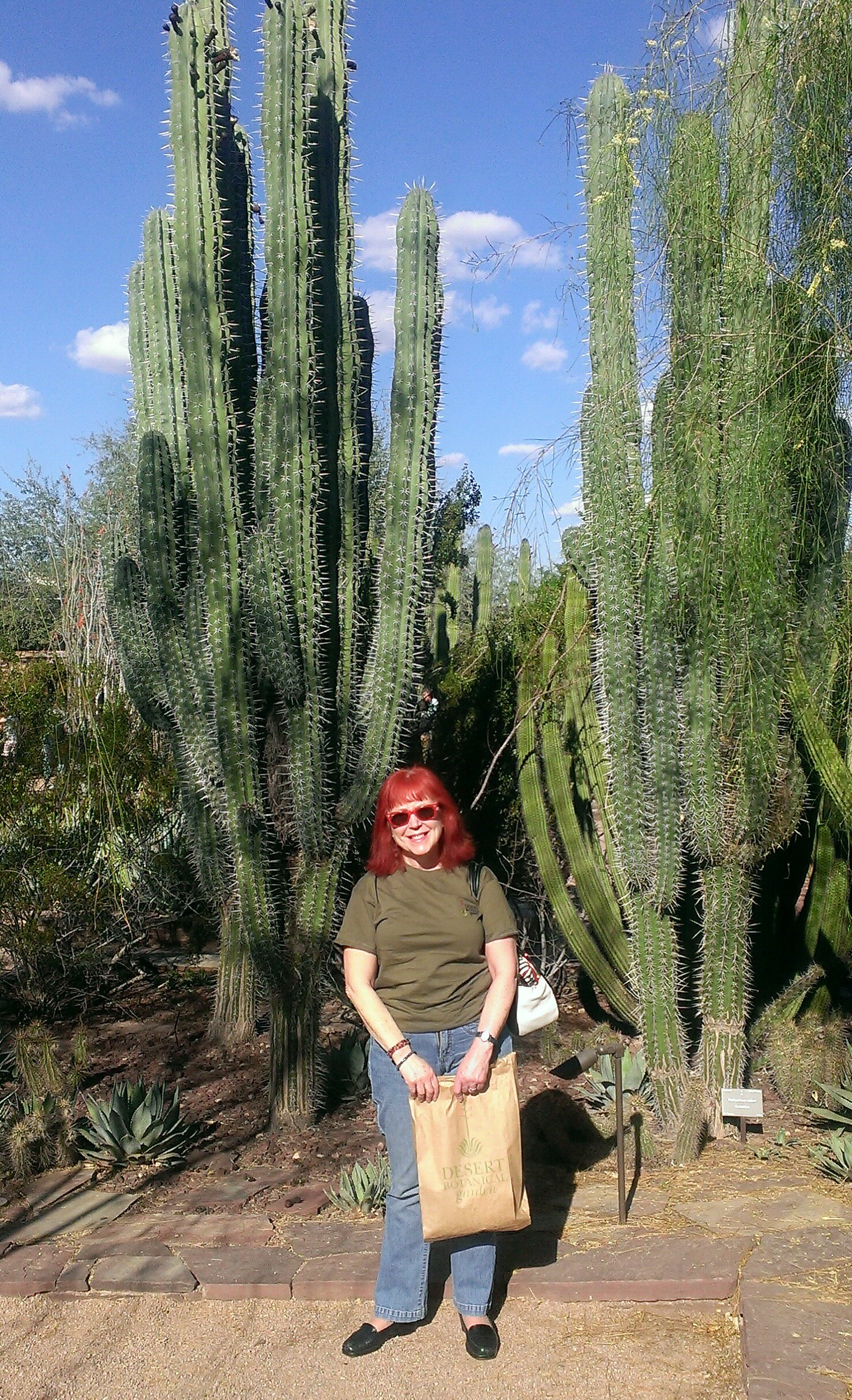me at Desert Botanical Gardens in front of tall cacti neversaydiebeauty.com