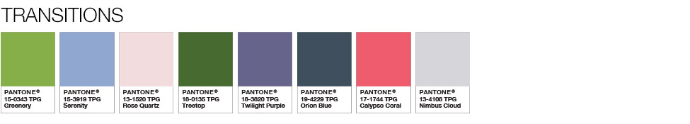 Pantone Transitions shades