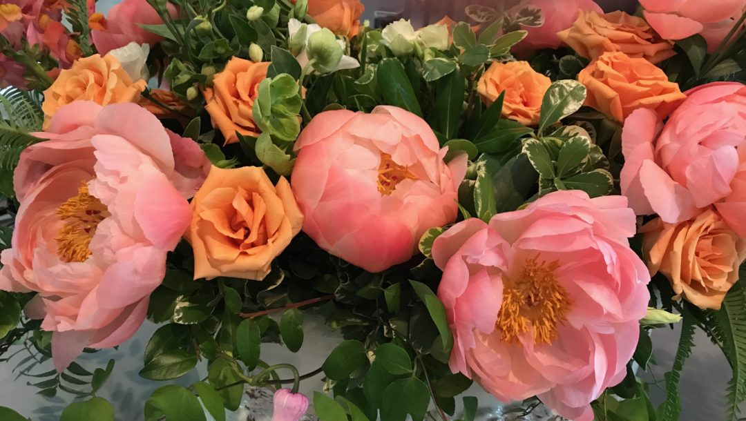 floral display of peach colored peonies and roses at the Museum of Fine Arts Boston, neversaydiebeauty.com